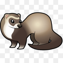 Blackfooted Ferret PNG and Blackfooted Ferret Transparent.