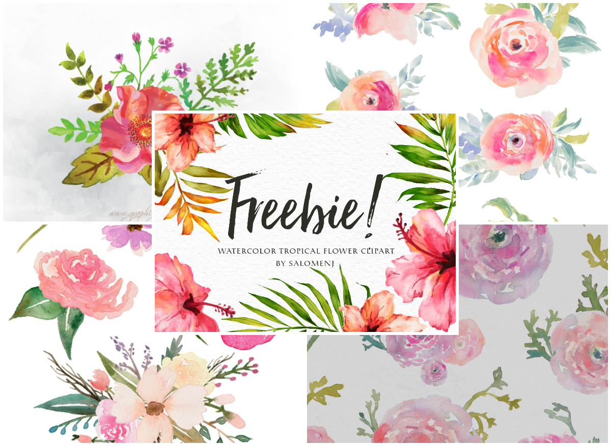 A Collection of 240+ Free Watercolor Floral Elements.