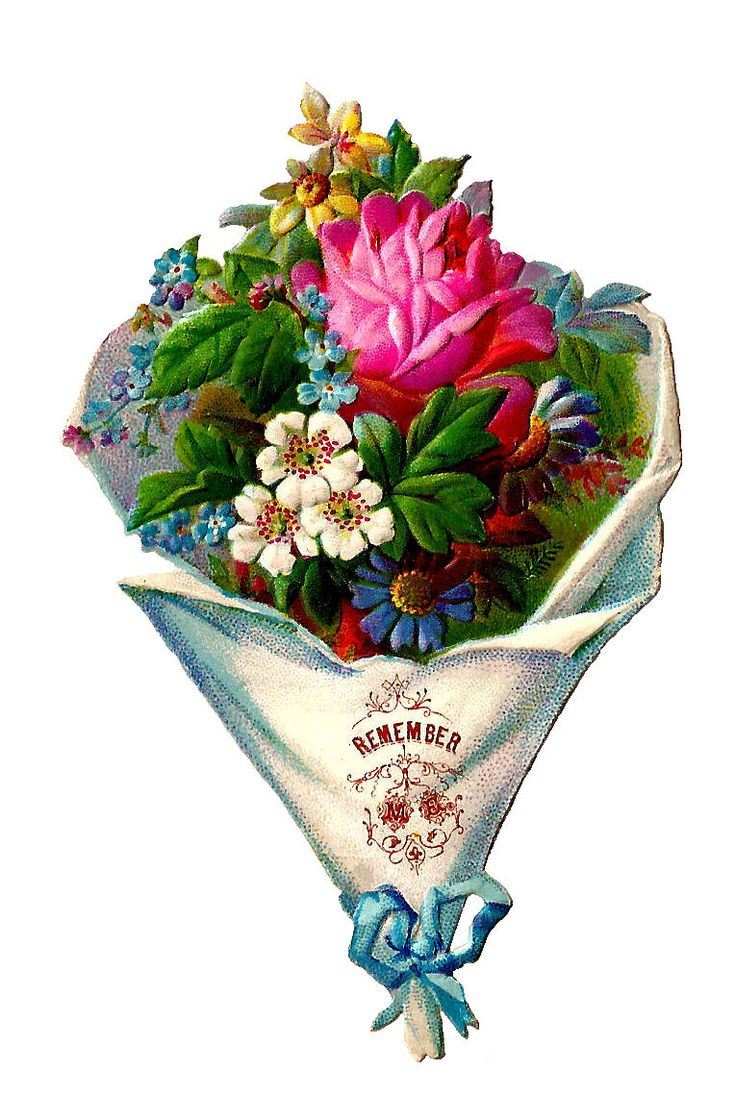 17 Best images about Victorian Vintage Flowers on Pinterest.