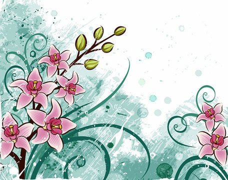 Lily Flower Background (Free) Clipart Picture Free Download.