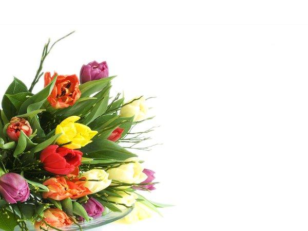 Картинки для поздравлений цветы 16