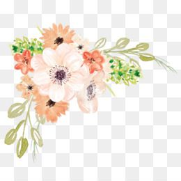 Watercolor Flowers Png Free at PaintingValley.com.