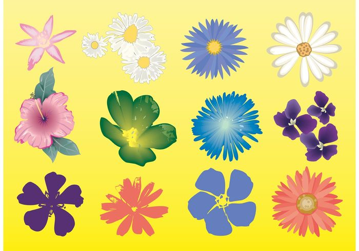 Free Flowers Vector Graphics.