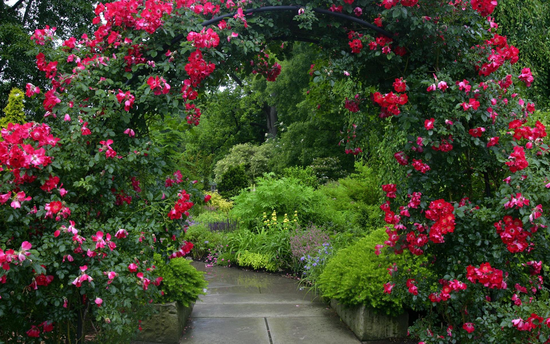 Flower Garden Background.