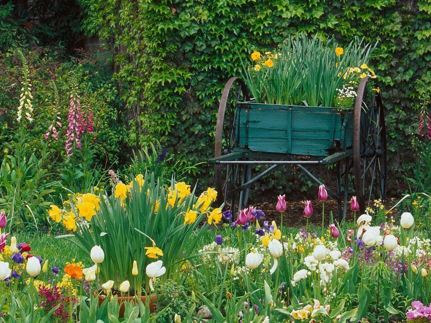 Spring Flower Garden @ Free Desktop Backgrounds.