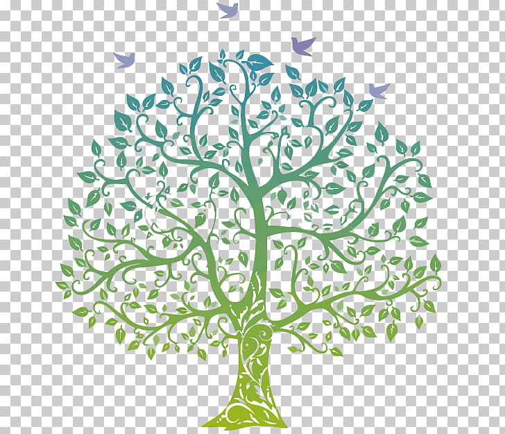 Family tree Genealogy , Family PNG clipart.