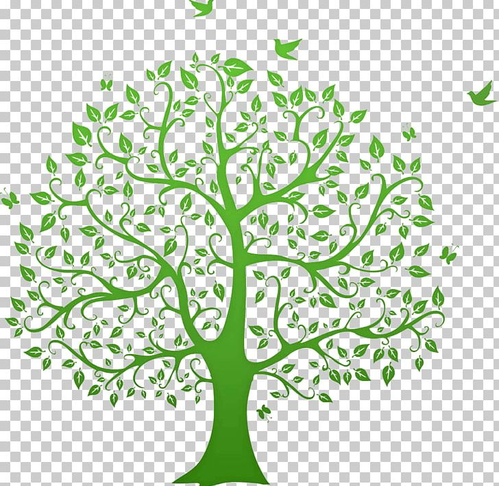 Genealogy Graphics Family Tree Open PNG, Clipart, Ancestor.