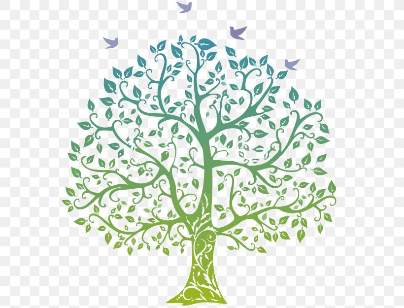 Family Tree Genealogy Clip Art, PNG, 580x625px, Family Tree.