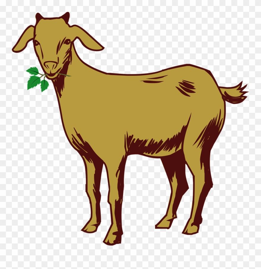 Free Goat Clipart 6, Buy Clip Art.