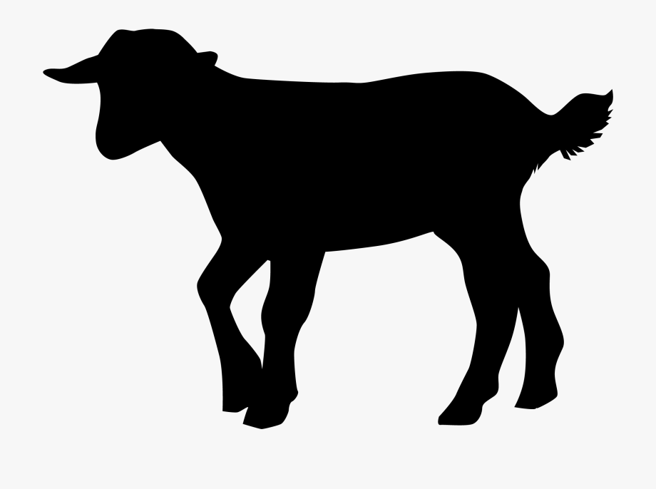 Baby Goat Silhouette Clipart , Transparent Cartoon, Free.