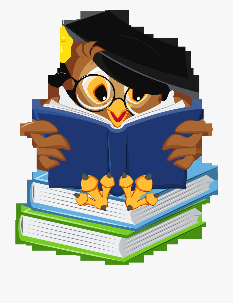 Graduation Cartoon Owl , Transparent Cartoon, Free Cliparts.