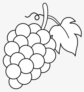 Free Grapes Black And White Clip Art with No Background.
