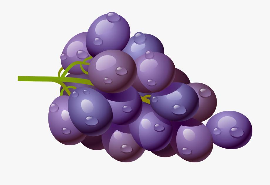 Grapes Grape Download Fruit Clip Art Free Clipart Of.