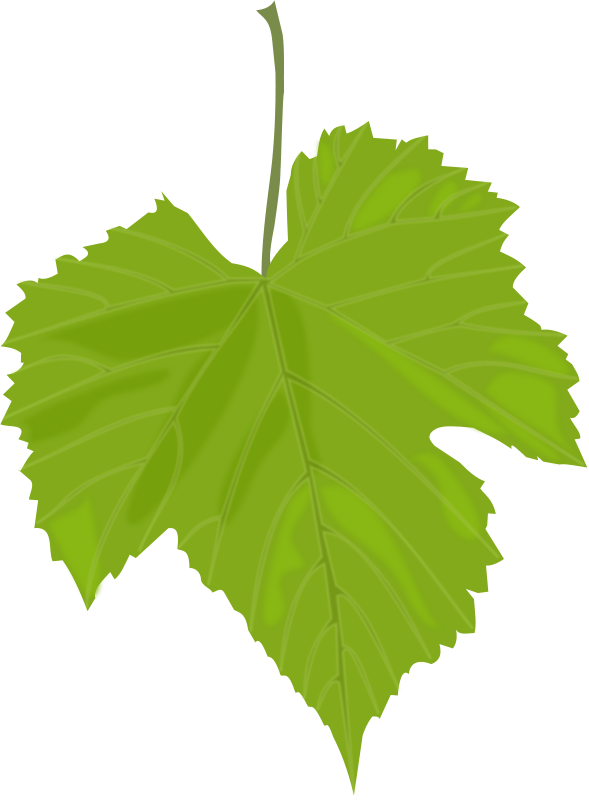 Free Clipart: Grape Leaf.