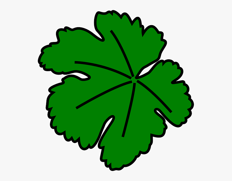 Leaf Clipart.