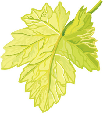 Grape leaf clip art free vector download (221,559 Free.