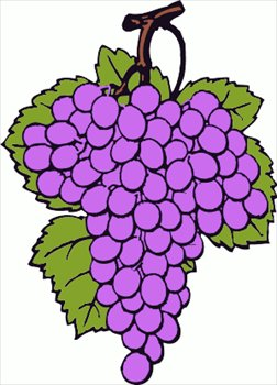 Free Grapes Clipart.