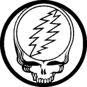 The Grateful Dead Steal Your Face Purple Yellow Button B.