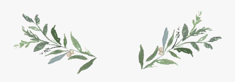 Clip Art Greenery Clip Art.