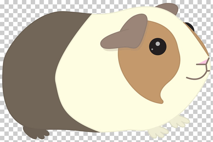 Guinea pig Whiskers , pig PNG clipart.