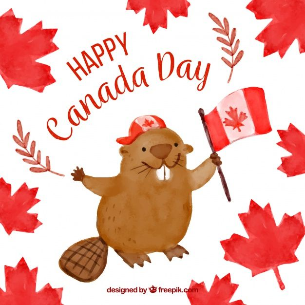 Watercolor background with cute beaver for canada day Free.