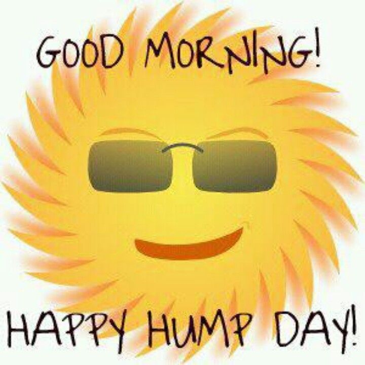 Happy hump day clipart 4 » Clipart Station.