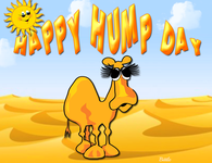Hump Day Camel Pictures, Photos, Images, and Pics for.