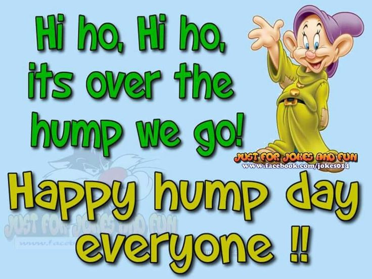 Hump Day Clipart Unique 177 best Wednesday images on.