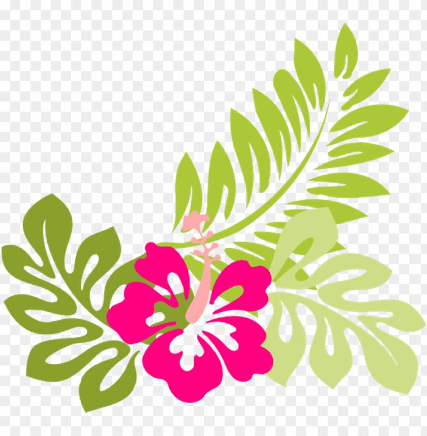tropical flower clip art flowers clip art hawaiian.