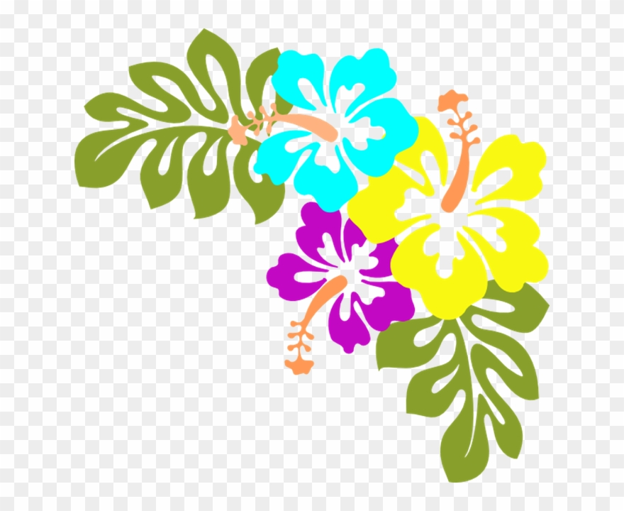 Luau Clipart Flower Free Hawaiian Collection Hibiscus.