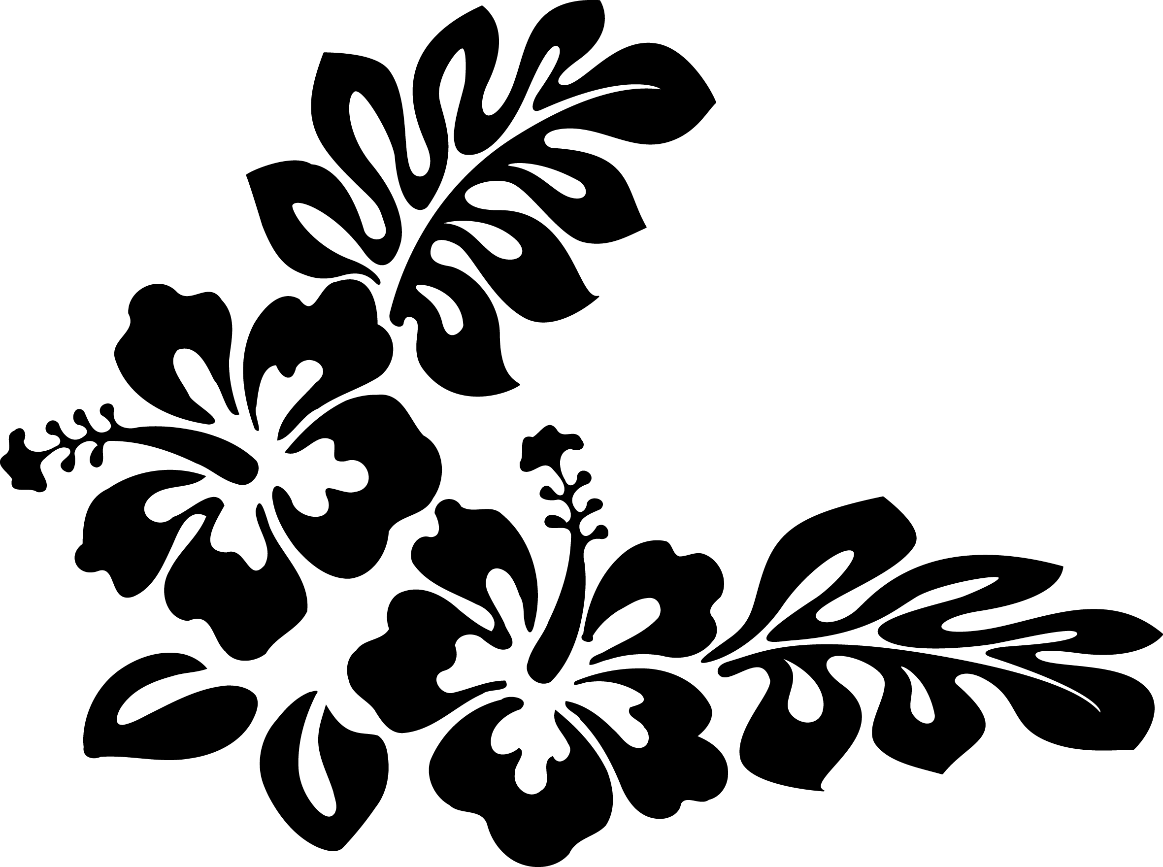 Hibiscus clipart hawaiian theme, Hibiscus hawaiian theme.