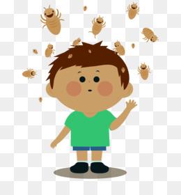 Head Lice Infestation PNG and Head Lice Infestation.