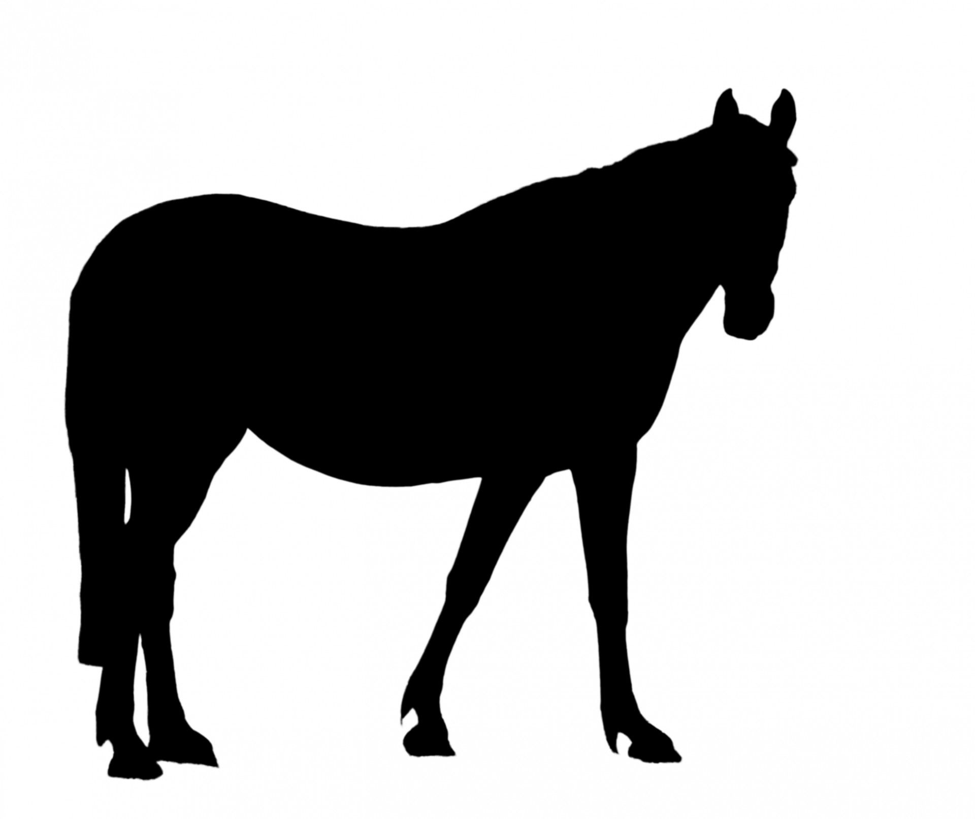Free Horse Silhouette Clipart.