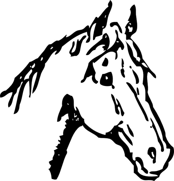 Horse Head clip art Free vector in Open office drawing svg.