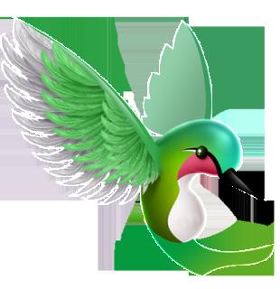 Hummingbird Clipart 374.