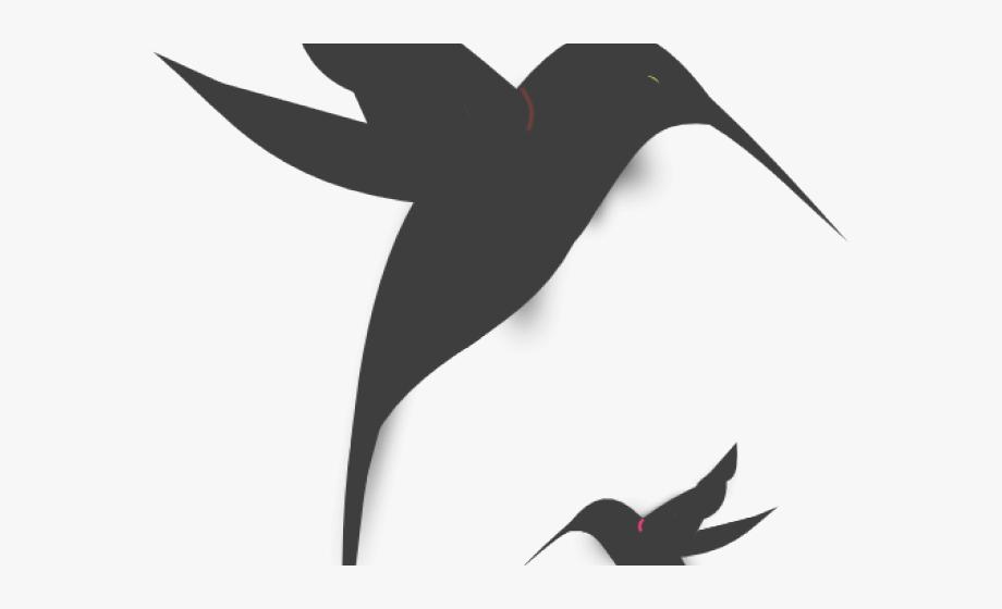 Hummingbird Clipart Hummingbird Outline.