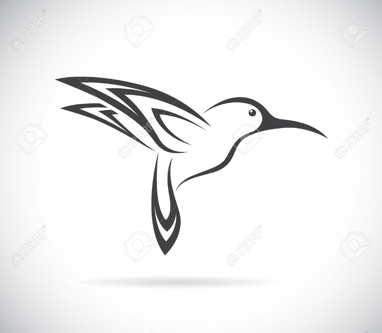 Vector image of an hummingbird design on white background.