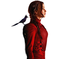 Download The Hunger Games Free PNG photo images and clipart.
