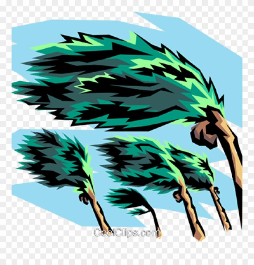 Clip Art Hurricane Collection Of 14 Free Hurricano.