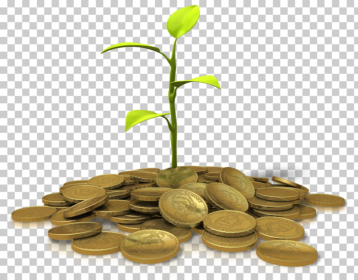 Investment , money tree PNG clipart.