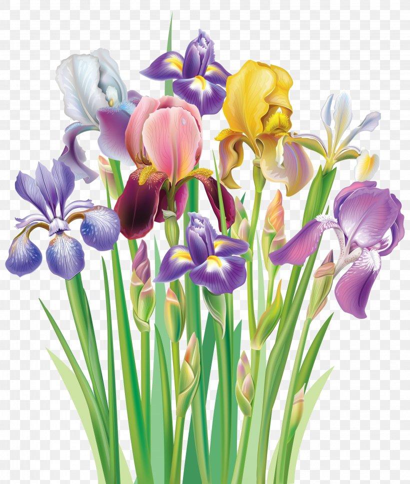 Iris Flower Data Set Iris Versicolor Clip Art, PNG.