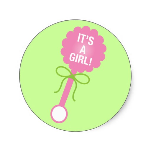 Baby Girl Rattle.