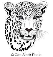 Jaguar Illustrations and Clipart. 2,667 Jaguar royalty free.
