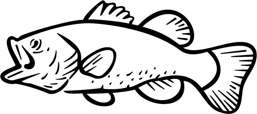 Bass fishing Largemouth bass Clip art.