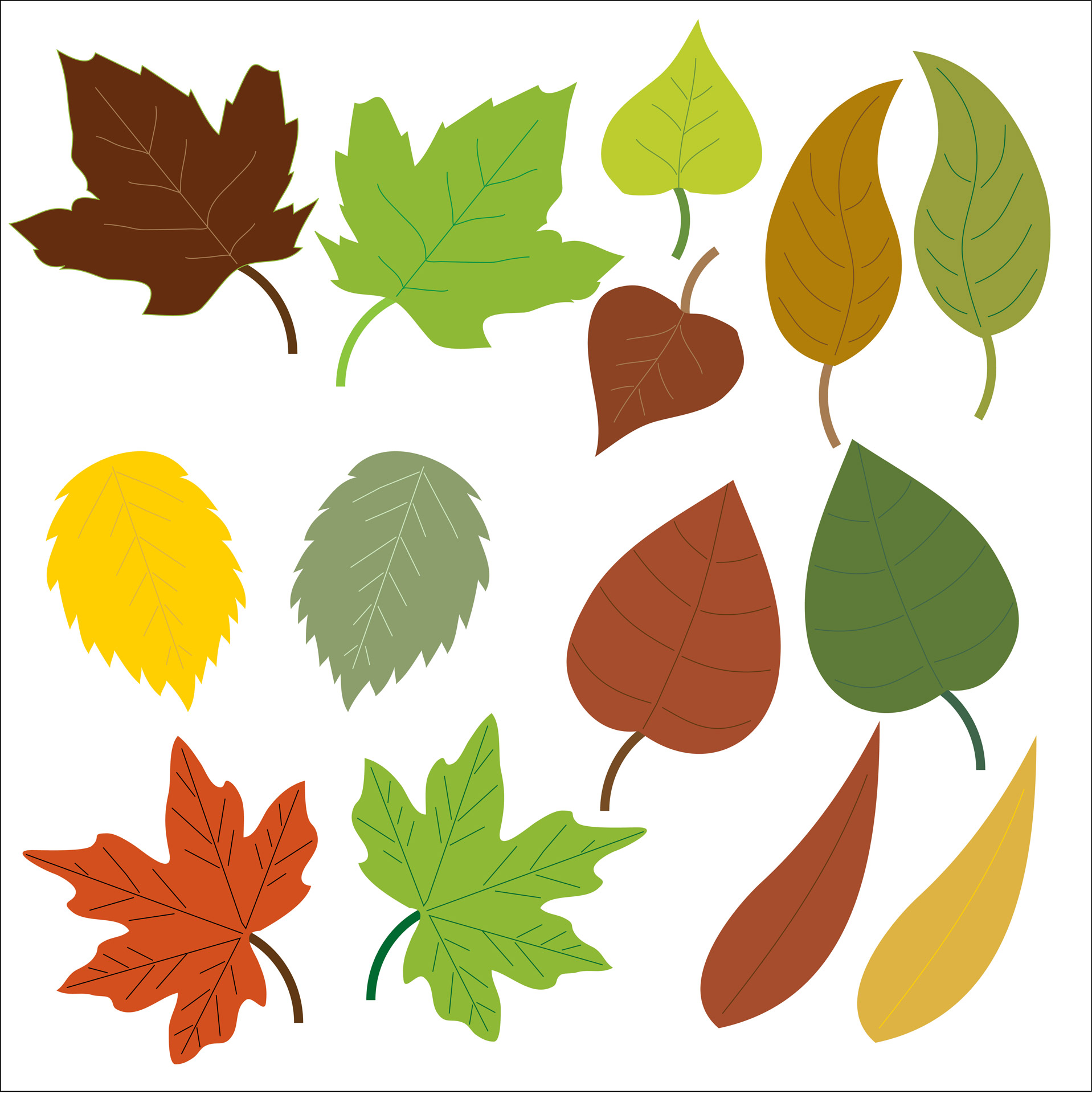 Leaves Clipart Free Stock Photo.