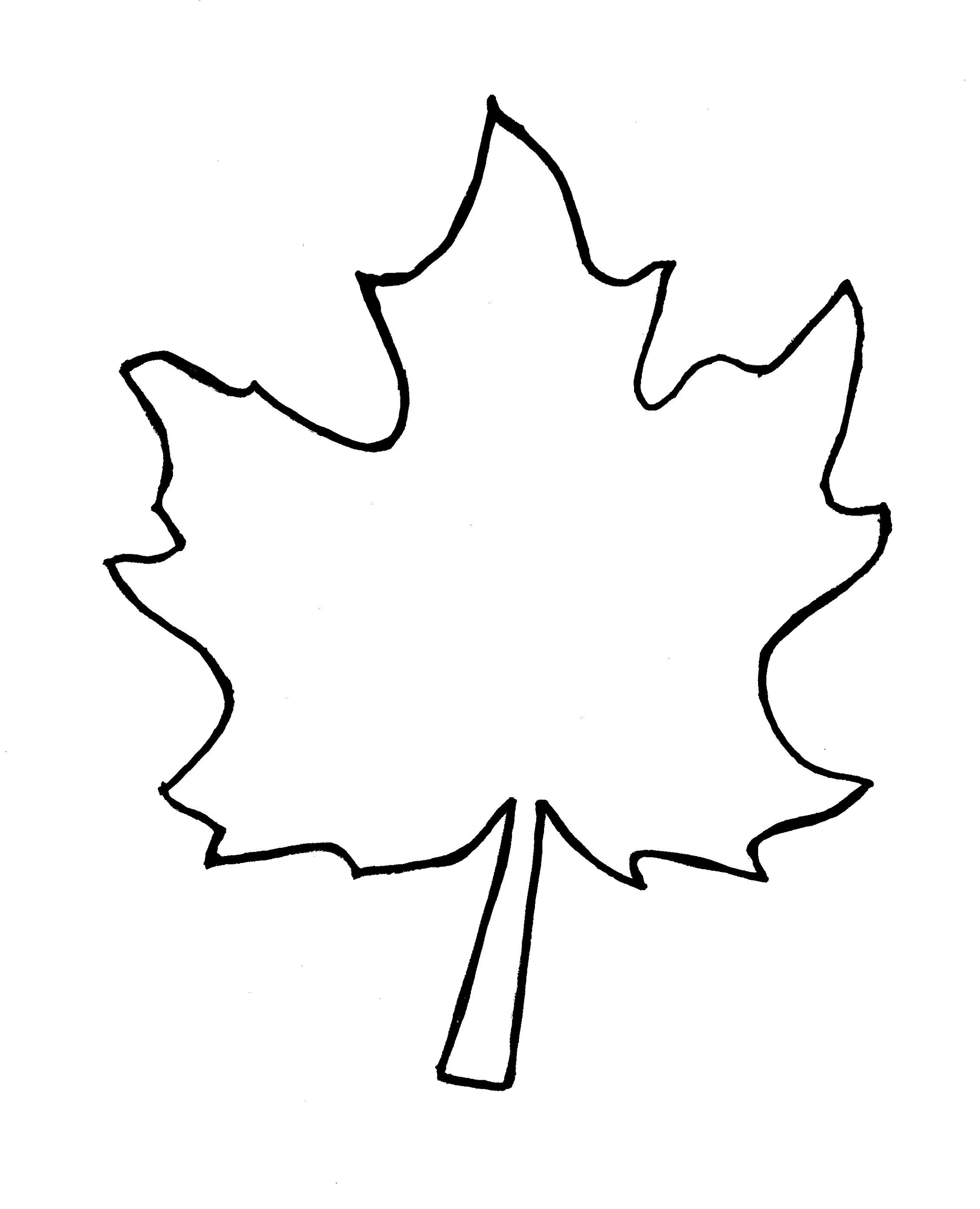 Leaf Outline Clipart Black And White Free Best Transparent Png.