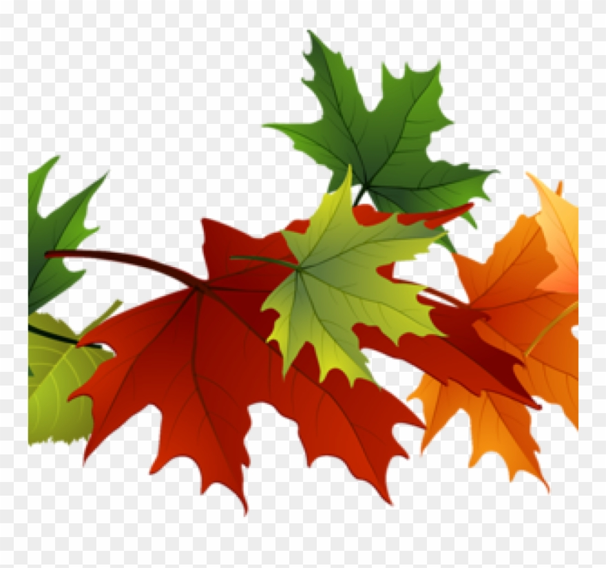 Fall Leaves Images Clip Art Free Leaf Clipart At Getdrawings.