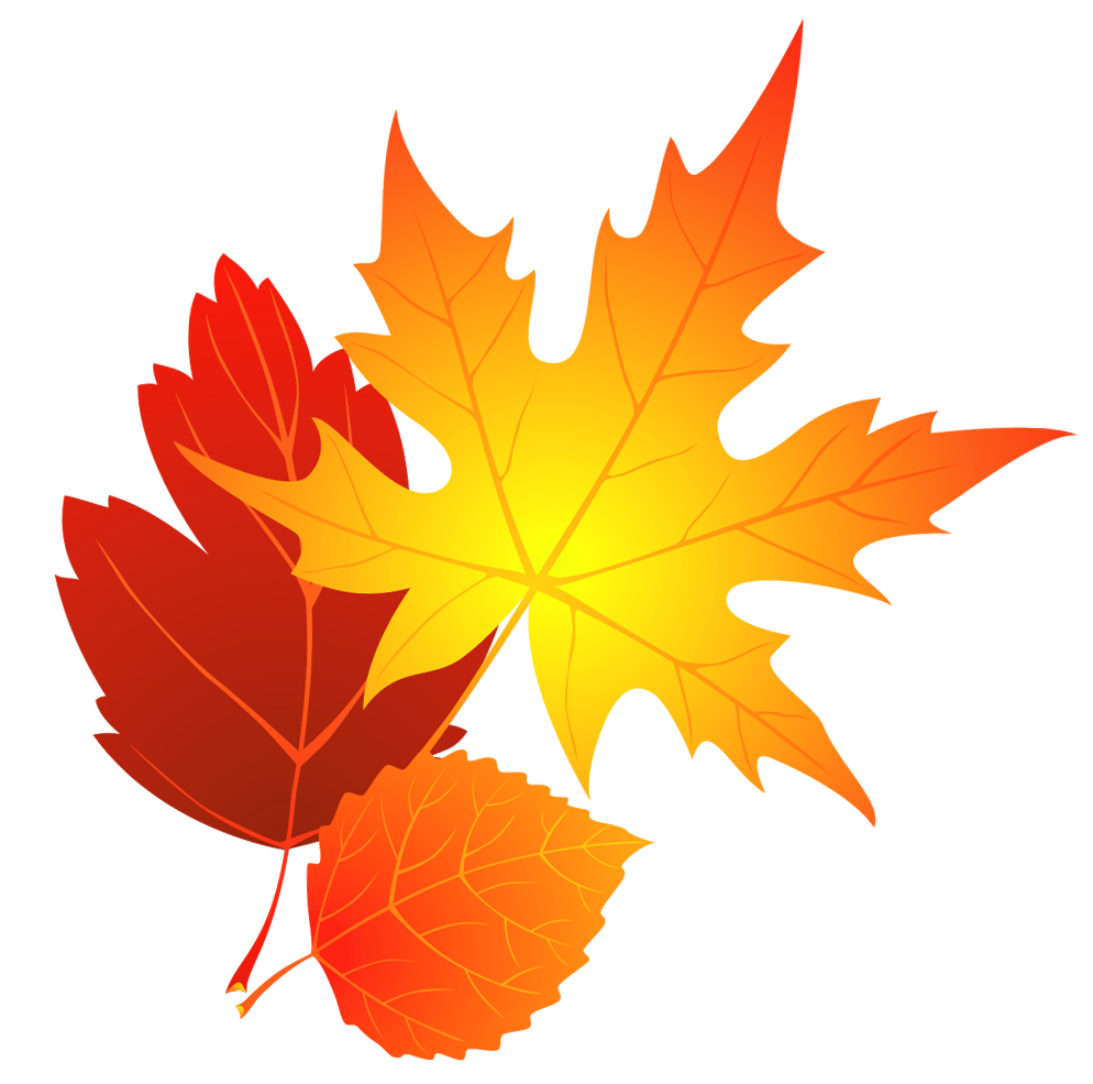 Transparent Fall Leaves Clipart png download.