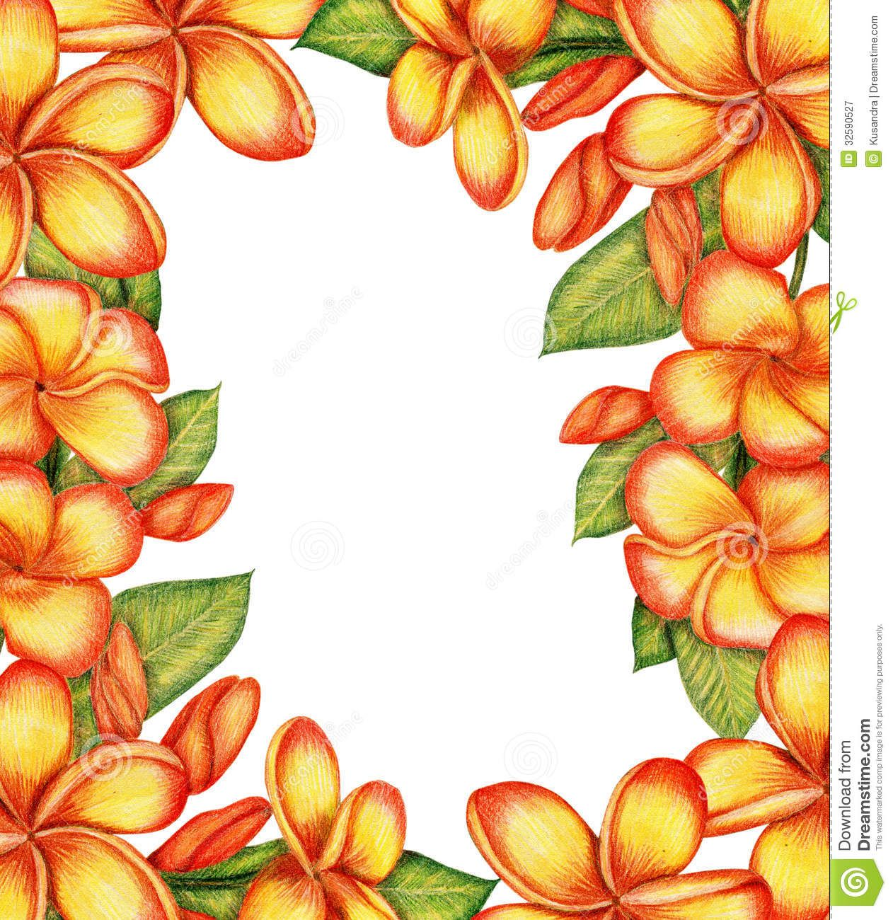 Free download Plumeria Flower Lei Clip Art Clipart Download.