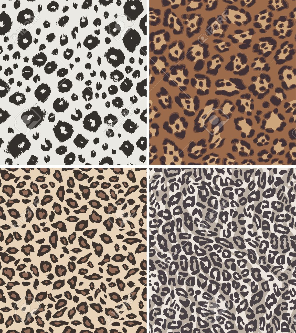 11,056 Leopard Stock Vector Illustration And Royalty Free Leopard.